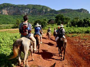 Reisroute Cuba met kinderen - Paardrijden Cuba