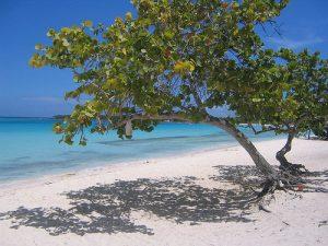 Strand Playa Pesquero