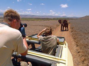 Reisroute Tanzania Kenia met kinderen - Masai Mara safari
