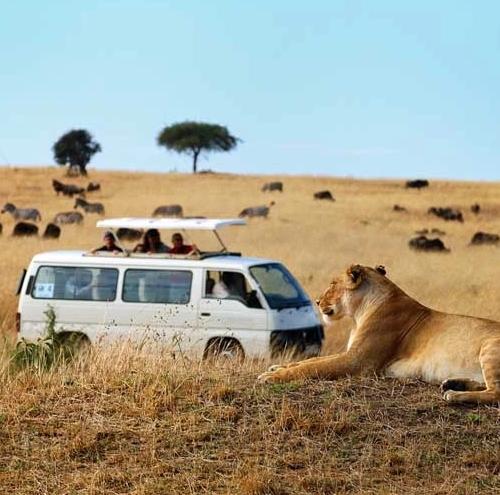 Vervoer Tanzania Kenia