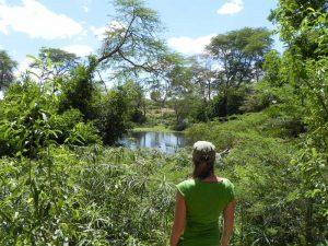 Amboseli-Tsavo - wandeling door Tsavo National Park