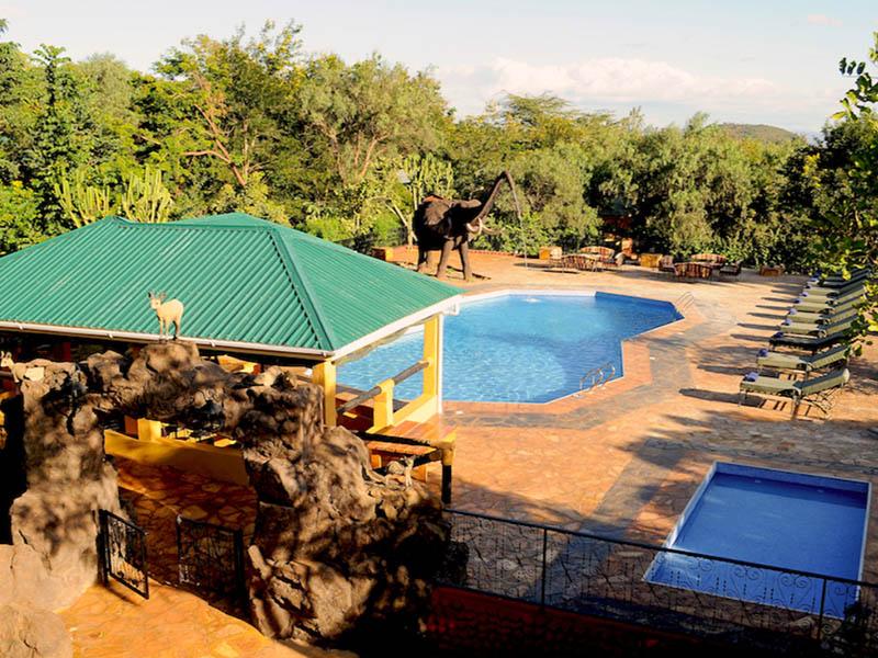 Zwembad bij verblijf net buiten National Park Tanzania