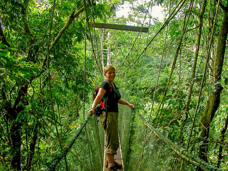 National Park Tanzania treetop klimmen