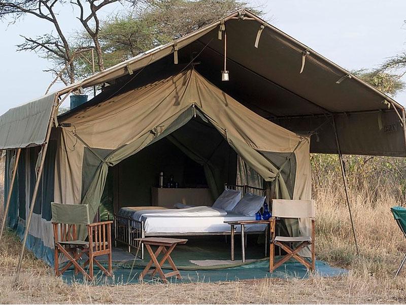 Tent Serengeti tijdens National Park Tanzania reis