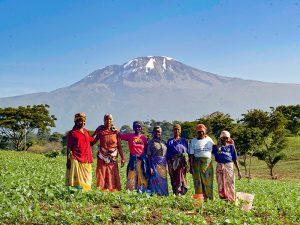 Hoogtepunten Tanzania reis