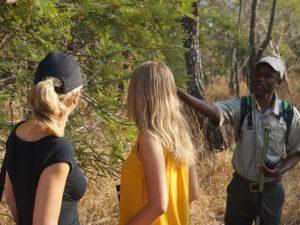 Kenia safari - wandelen op Crescent Island