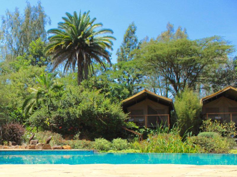 Nairobi - eco camp zwembad