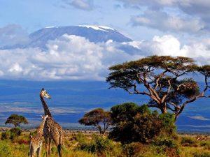 Amboseli-Tsavo - uitzicht over de Kilimanjaro