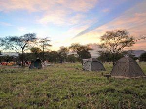 Hoogtepunten Tanzania reis met kinderen - tenten op campsite in nationaal park