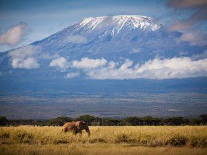 Kenia vakantie twee weken - Mount Kilimanjaro