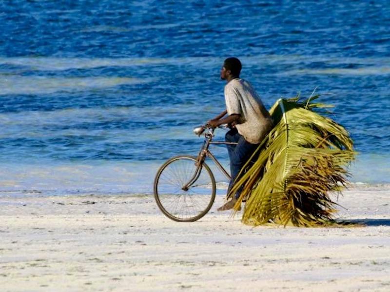 Zanzibar - local op het strand