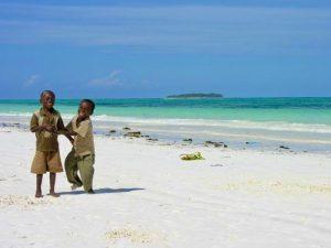 Safari Tanzania - tropisch afsluiten op Zanzibar