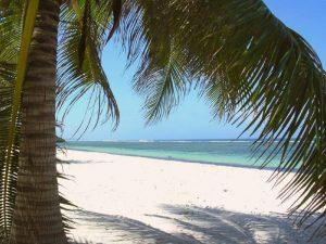 Witte stranden van Zanzibar