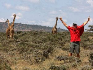 Kenia safari - giraffen op de vlaktes