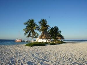 Belize Strand Meer Palmen Panorama