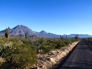 Landstraße Baja California