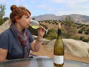 Baja California Valle Guadeloupe Weinprobe