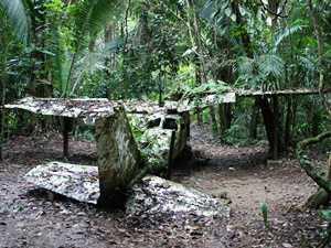 Flugzeug im Dschungel