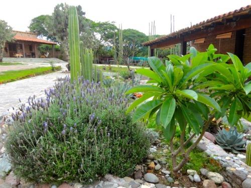 Garten auf der Ranch