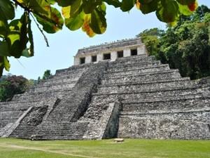 Mexiko Palenque Ruine Dschungel