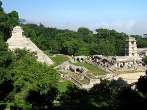 Aussicht auf Tempel in Palenque