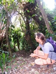 Wandern in Bacalar