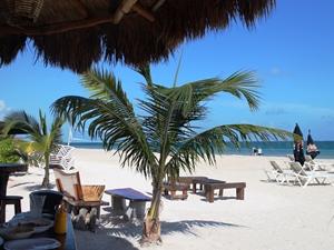 Easy Going Puerto Morelos