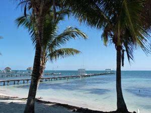 Palmen und Pier auf Caye Caulker