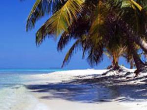 Strand und Palmen in Placencia