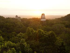 guatemala-sonnenaufgang-tikal-tempel-dschungel