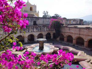 Blumenpracht an Klosterruine