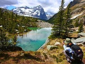 Canada reis door de rockies