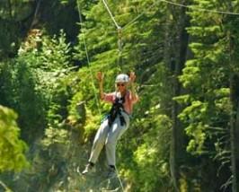 Whistler Canada ziptrek