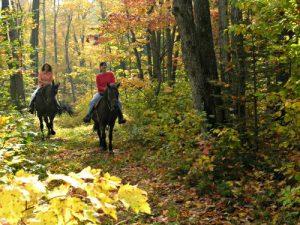 Sacacomie lodge - paardrijden