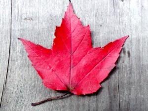 Oost-Canada Montréal