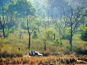 Jeep Safari im Corbett Nationalpark
