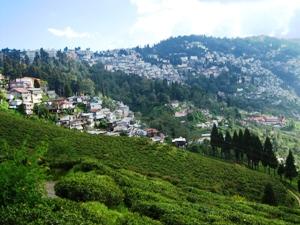 Landschaft der Hill Station Darjeeling