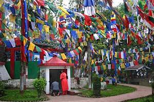 Gebetsflaggen in Darjeeling