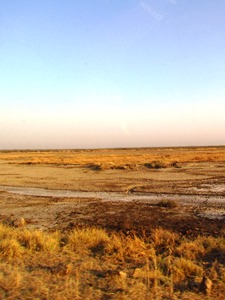 Wüstenlandschaft in Gujarat