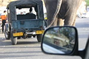 Mit der Rikscha unterwegs in indischen Städten