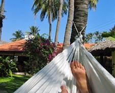 Entspannt an Keralas Palmenstrand