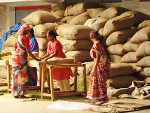 Frauen bei der Arbeit in einer Teefabrik bei Munnar.