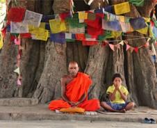 Buddhas Erleuchtung unterm Bodhibaum