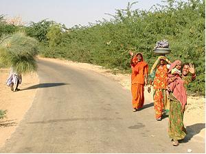 Indische Frauen unterwegs auf dem Land