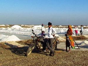 Salzgewinnung in Gujarat