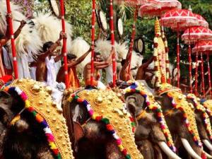 Elefantenfest in Thrissur