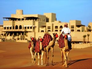 abu-dhabi-kamele