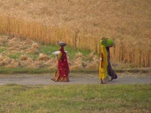 Frauen bei Nordindien Gruppenreise nach Bikaner
