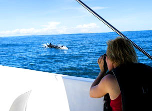 Boottocht Uvita_dolfijn