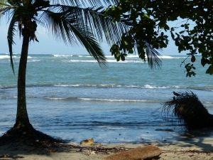 De ruige, dichtbegroeide kust van Drake Bay bij Corcovado